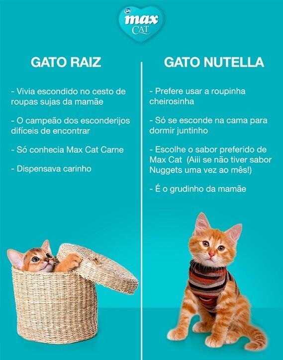 top memes gato raiz gato nutella