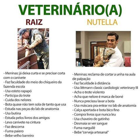 top memes veterinario raiz veterinario nutella